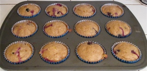 Weekday Breakfasts, Updated! Monday: blueberry lemon coconut muffins