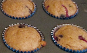 Weekday Breakfasts Updated! Monday: whole wheat muffins blueberry coconut and lemon