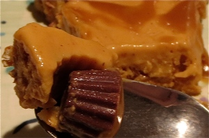 "peanut butter pumpkin caramel pretzel ""ice cream"" pie with peanut butter cups"