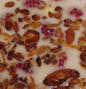 orange spiced granola with coconut milk and raspberies