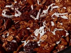 coconut chocolate almond cherry granola