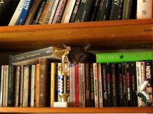 Artemis on bookshelf