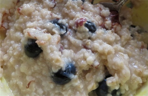 blueberry hazelnut chocolate chip oatmeal