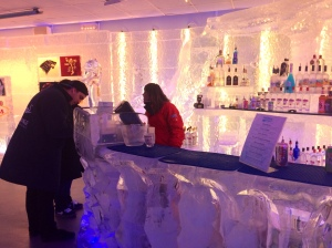 minus 5 ice bar at Monte Carlo Las Vegas