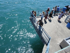 view off Santa Monica Pier