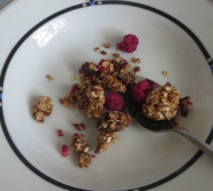 chocolate peanut butter raspberry honey granola